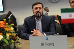 Iran envoy to IAEA says US source of many world's problems