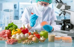 بسته تخصصی بهره وری صنایع غذایی ارائه می شود