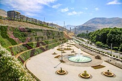 پارک «امید» افتتاح شد/ بهرهبرداری از دیوار عمودی سبز