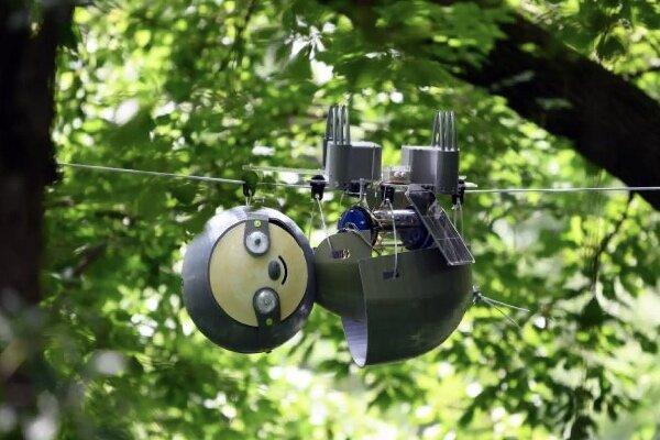 ربات تنبل از محیط زیست مراقبت می کند