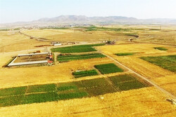 تجهیز ۷۵ هزار خانوار عشایری به پنل خورشیدی تا پایان برنامه ششم