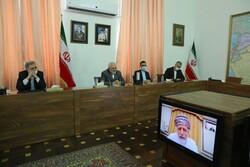 Iran, Oman FMs hold talks via videoconference