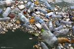 روزانه چقدر میکروپلاستیک میخوریم؟/ شدت اثرات زیست محیطی پسماند دریایی چند برابر خشکی است