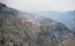 مهار آتش سوزی در منطقه چاه فعله غربی شهرستان بندرعباس