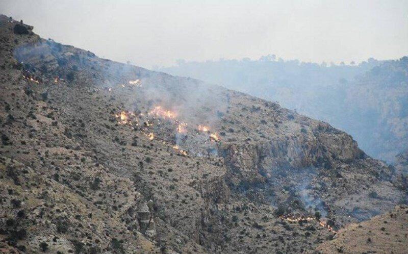 «زاگرس» در آتشِ حریقهای انسانی/ بلوطها زغال میشوند –  |