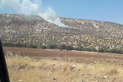 آتشسوزی در جنگلهای «ششدار» ایلام