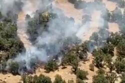 آتش به جان جنگل های آبشار یاسوج افتاد