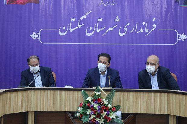 ۱۷ درصد تسهیلات اشتغال روستایی استان بوشهر به تنگستان رسید