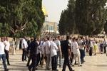 شهرک نشینان صهیونیست به مسجدالاقصی یورش بردند