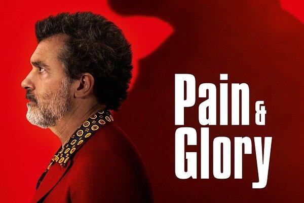 «درد و افتخار» پدرو آلمادوار جوایز پلاتینو را درو کرد