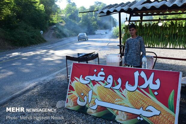 İşte Heyran köyünün vazgeçilmez süt mısırı