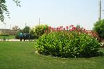 ۳۵ پارک جدید در تبریز احداث میشود