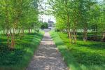 احیای هویت شهر تبریز هدف اصلی احداث پارک بزرگ است