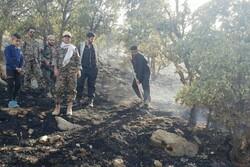 حریق در منطقه حفاظت شده ارغوان ایلام مهار شد