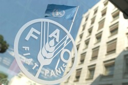 FAO shares knowledge with Iran in Early Warning Action system