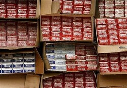 دستگیری ۱۹ سارق در بوئین زهرا / کشف سیگارهای قاچاق
