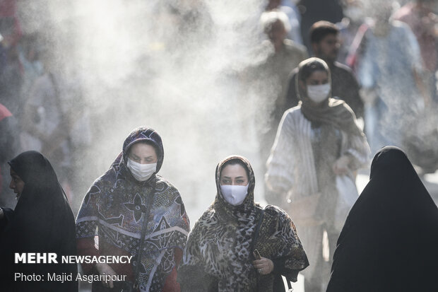 Face mask export banned:official