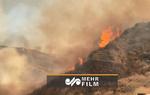 VIDEO: Brushfire shuts down 14 freeway in north LA