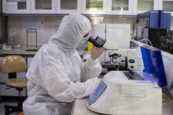 ہاجر اسپتال میں کورونا وائرس کا خصوصی شعبہ