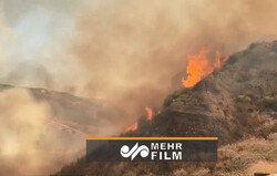 لاس انجلس میں آگ لگ گئی