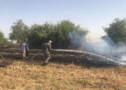 حریق در مزارع شهرکرد/ ۴ هکتار گندم زار سوخت