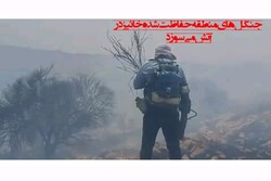 آتش همچنان بر پیکره درختان کهن منطقه حفاظت شده خائیز می تازد