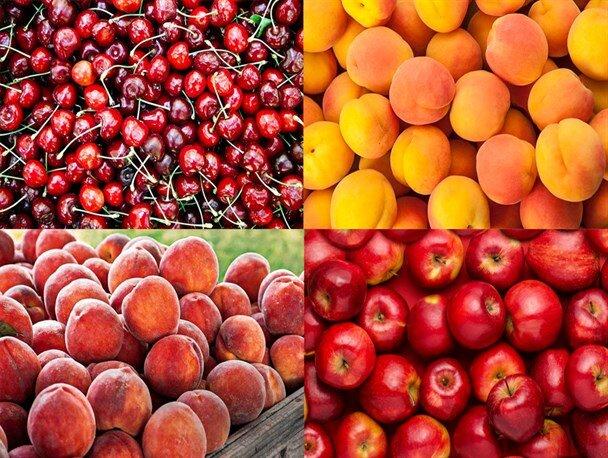 قیمت برخی میوههای تابستانه ۸۵ درصد کاهش یافت