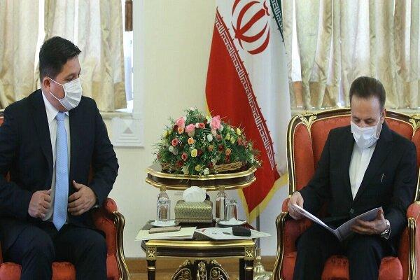 Iran to back legal Venezuelan govt.: Vaezi