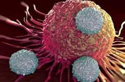 آندروژن درمانی در بهبود سرطان سینه موثر است