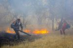 شعلههای آتش در منطقه الوار گرمسیری مهار شد