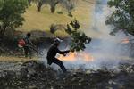 آتش سوزی در مراتع و جنگل های گوغر در کرمان