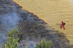 """حريق في غابات البلوط بمنطقة """"جهار محل وبختياري"""" /صور"""