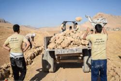 امسال ۸۶۰ شغل توسط بسیج سازندگی استان قزوین ایجاد میشود