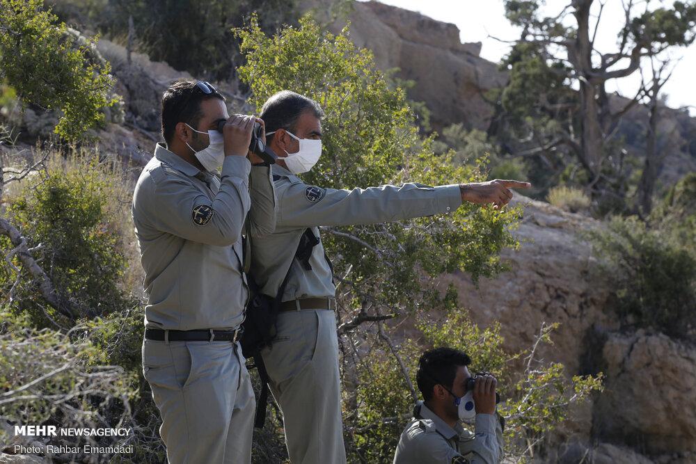 شهادت ۱۴۳ محیطبان در راستای حفاظت از محیط زیست کشور