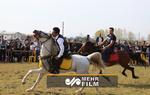 ازدحام مردم در جشنواره اسب در اوج کرونا