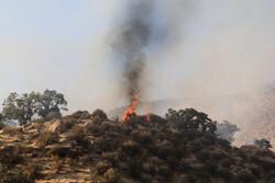 اطفا حریق در ارتفاعات گلگون و هرایرز شهرستان ممسنی