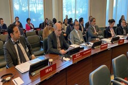 Iran opposes OPCW's decision over Syria