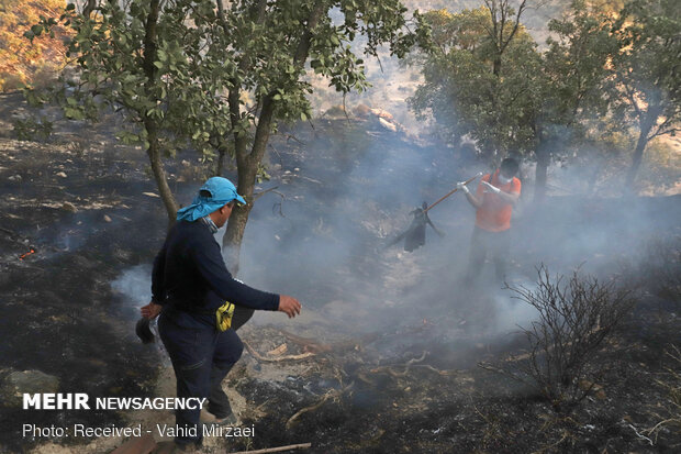 Extinguish of wildfire of Harariz heights in S Iran