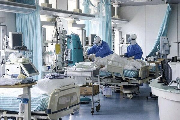 169 مورد مثبت کرونا در بیمارستانهای استان بوشهر بستری هستند