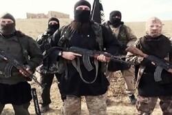 ئەمیرێک و ٣١ ئەندامی داعشی دەستگیر کران