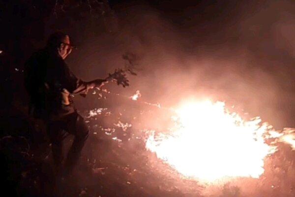 آتش بلوط های دمچنار بویراحمد را خاکستر کرد/ سوخت دمنده ها تمام شد