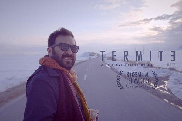 'Termites' to be screened at Italian film festival
