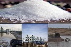 صنعت ایران «نمکپرورده» یُد گلستان/ جهش تولید در بستر حفظ محیطزیست