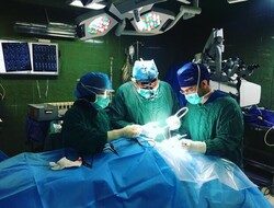 درمان موفق کودکی که مورد حمله گاندو قرار گرفته بود