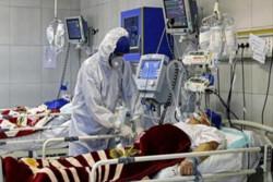 ۲۱۶ فوتی کرونا در شبانه روز گذشته/ شناسایی ۲۵۴۸ بیمار جدید