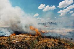 ۳۰ هکتار از مراتع اراضی شهرستان ماهنشان دچار آتش سوزی شد