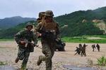 ترامپ گزینه کاهش حضور نظامیان آمریکا در کره جنوبی را بررسی می کند