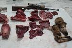 آخر هفته پرحادثه در محیطزیست شاهرود/ ۸ رأس گوسفند وحشی شکار شد