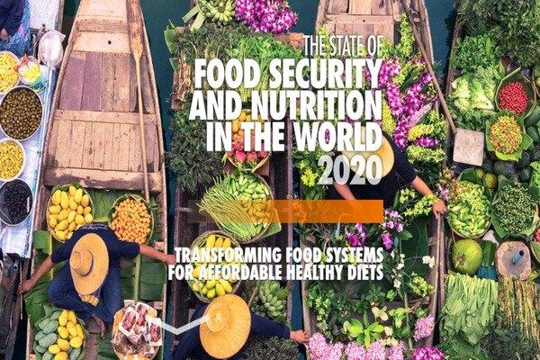 Hunger increases across world: FAO