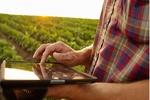 شهرک استارت آپی حوزه کشاورزی راه اندازی می شود